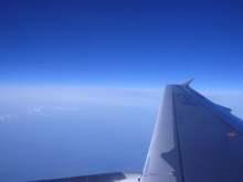 Plane wing
